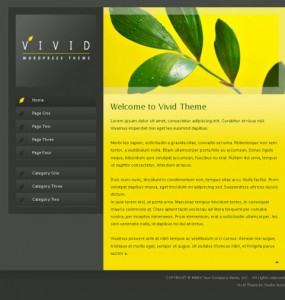 Vivid WordPress Theme