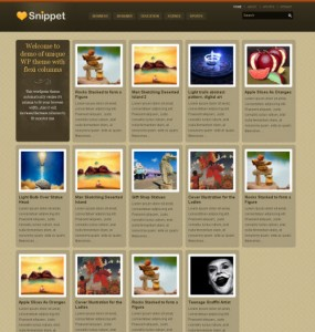 Snippet WordPress Theme