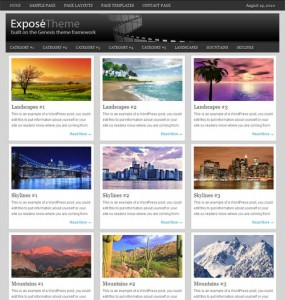 Expose WordPress Theme