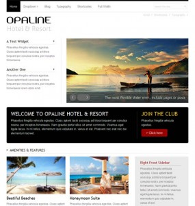 Opaline WordPress Theme