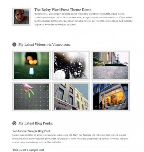 Relay WordPress Theme