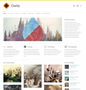 Clarity WordPress Theme