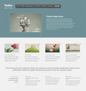 feather wordpress theme
