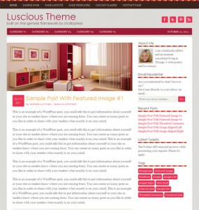 Feminine Premium WordPress Theme