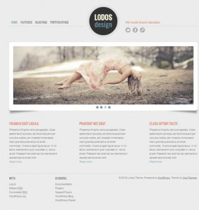 Business Portfolio Premium WordPress Theme