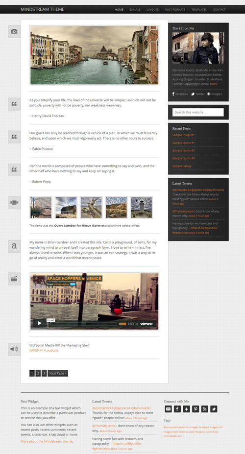 Responsive Lifestream WordPress Theme