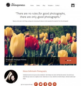 Responsive Photography Portfolio WordPress Theme