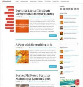 Sensational Responsive Blog WordPress Theme