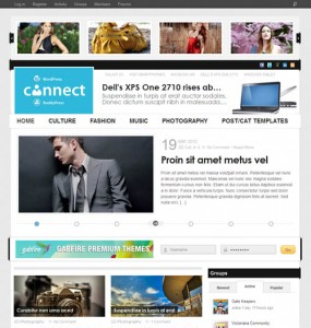 Connect WordPress BuddyPress Theme